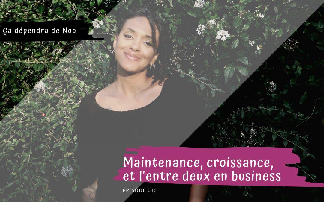 #016 – Maintenance, croissance, et l'entre deux en business