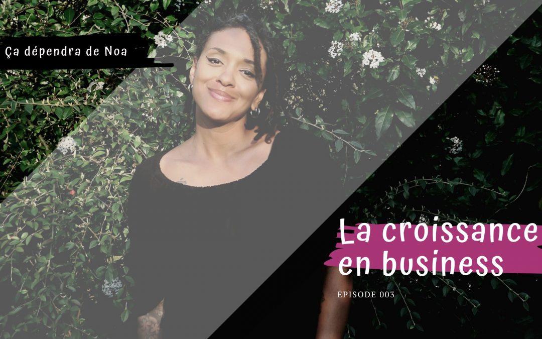 #003 – La croissance en business